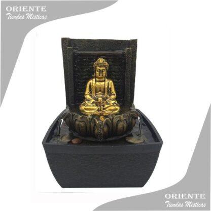 fuente del feng shui con la imagen de buda en el medio