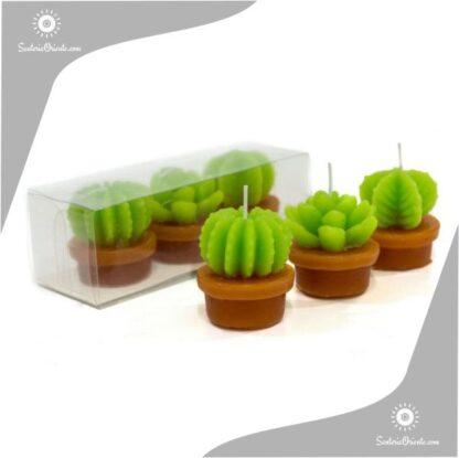 velas cactus chicas o pequeñas x 3 unidades con maceta
