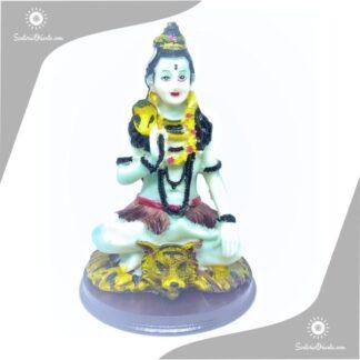 imagen de resina de shiva