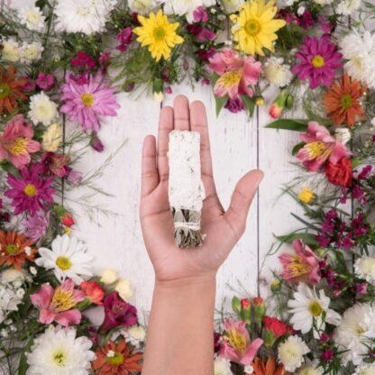 sahumitos sagrada madre de yagra en la palma de la mano